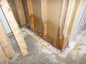 Bathroom Renovation After Extensive Sewage Damage Took Place
